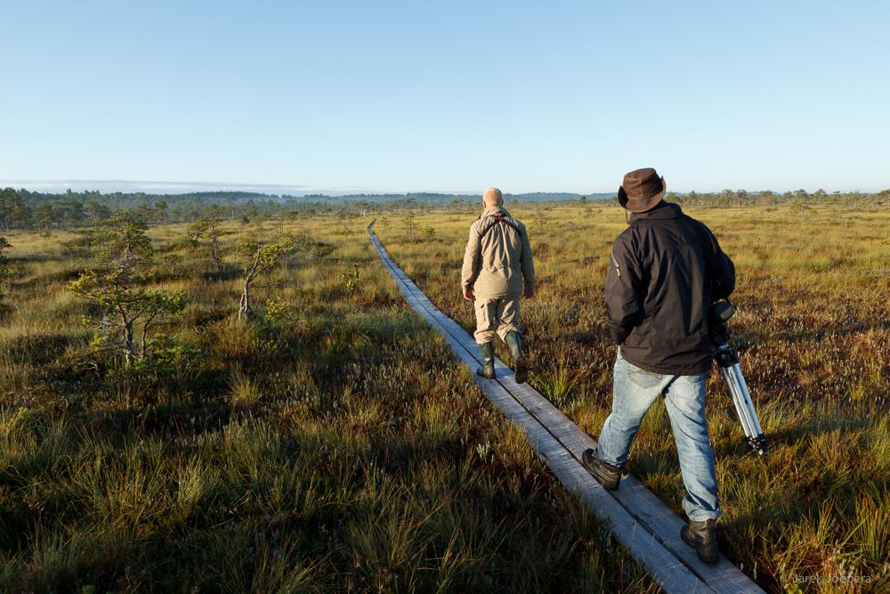 In the peat bog by Jarek Joepera