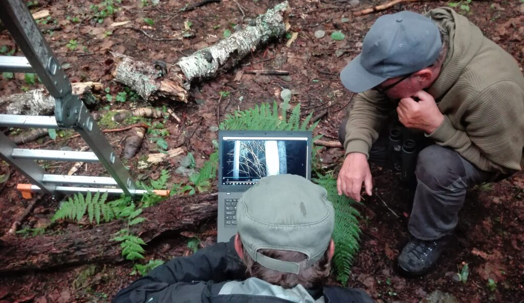 Flying Squirrel expert looking at the trail camerasa photos