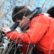 Self-Guided Birding Tours